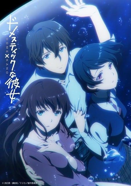 Imagen promocional del anime Domestic na Kanojo