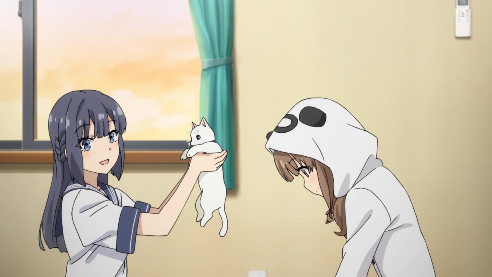 Seishun Buta Yarou wa Bunny Girl Senpai no Yume wo Minai - Capítulo 9