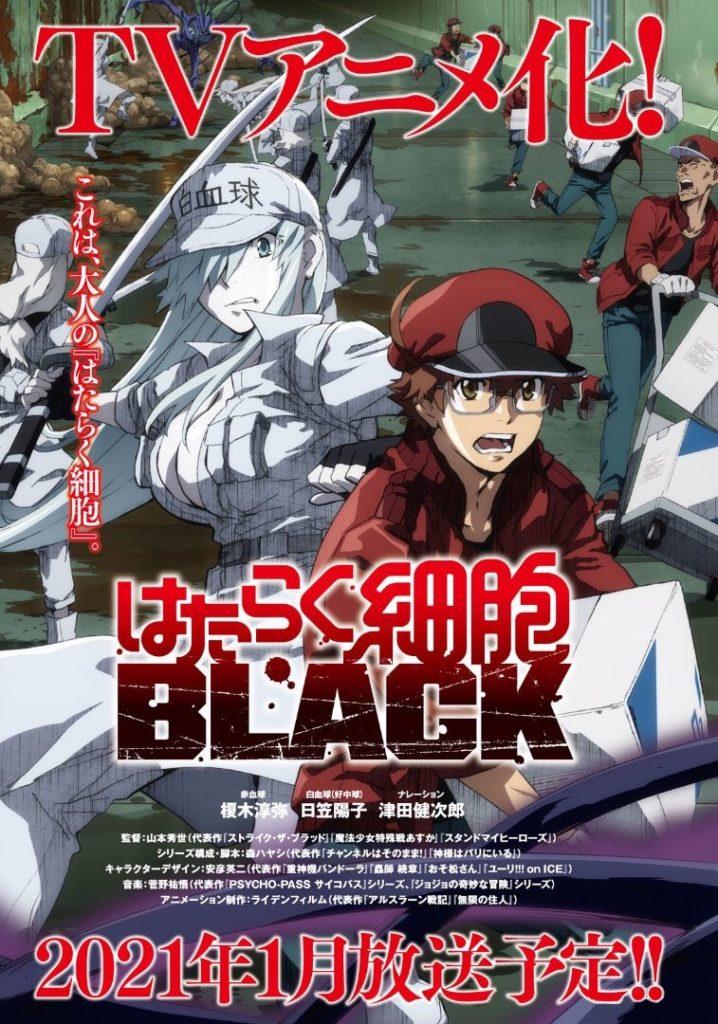 Hataraku Saibou Black - KV